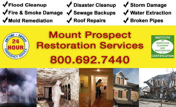 mount prospect water fire wind damage cleanup