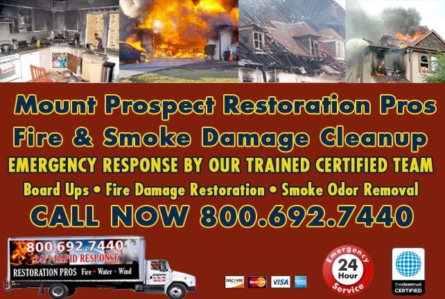 Mount Prospect fire damage repair
